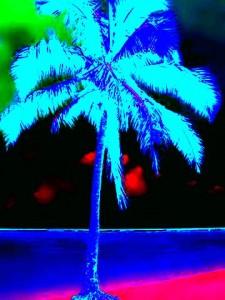 palm_tree_21